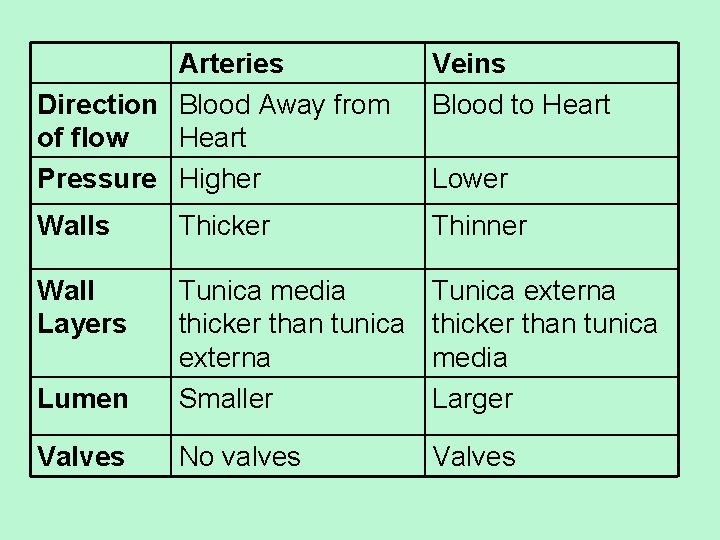 Arteries Direction Blood Away from of flow Heart Pressure Higher Veins Blood to Heart