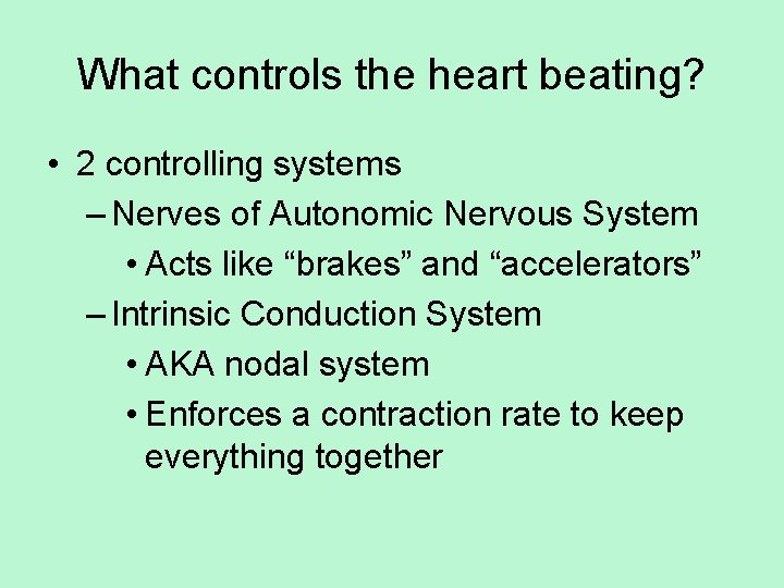 What controls the heart beating? • 2 controlling systems – Nerves of Autonomic Nervous