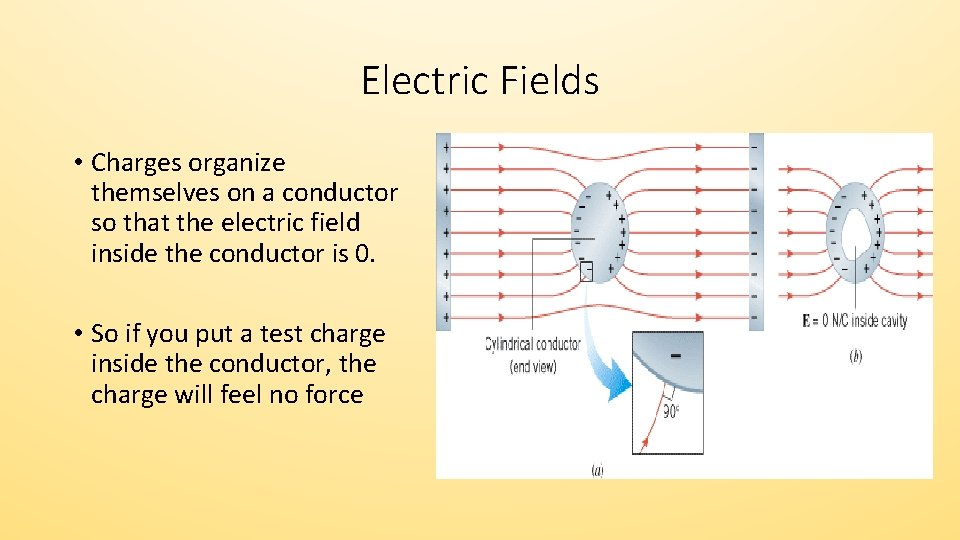Electric Fields • Charges organize themselves on a conductor so that the electric field
