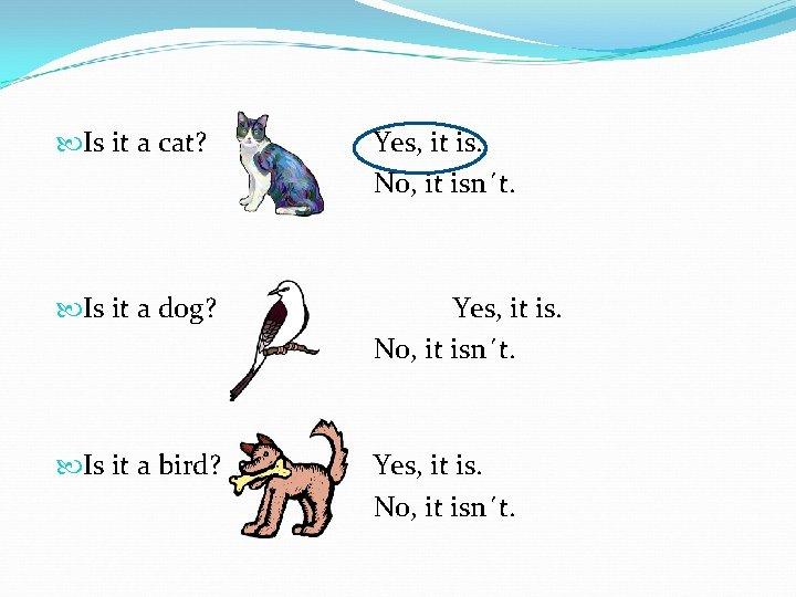 Is it a cat? Yes, it is. No, it isn´t. Is it a