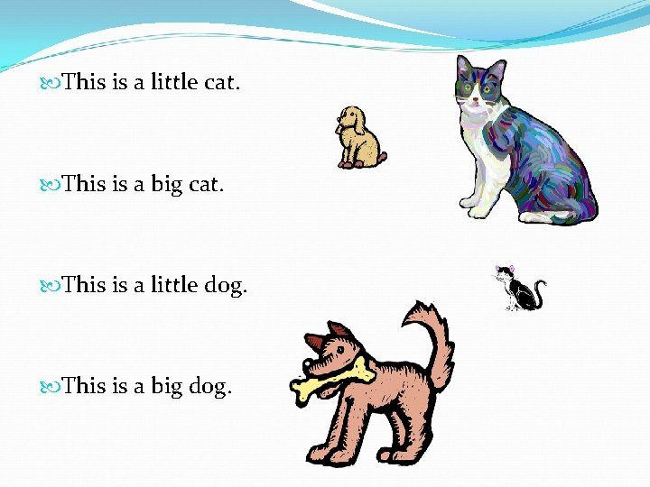 This is a little cat. This is a big cat. This is a