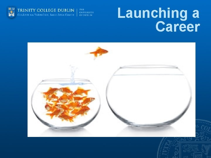 Launching a Career