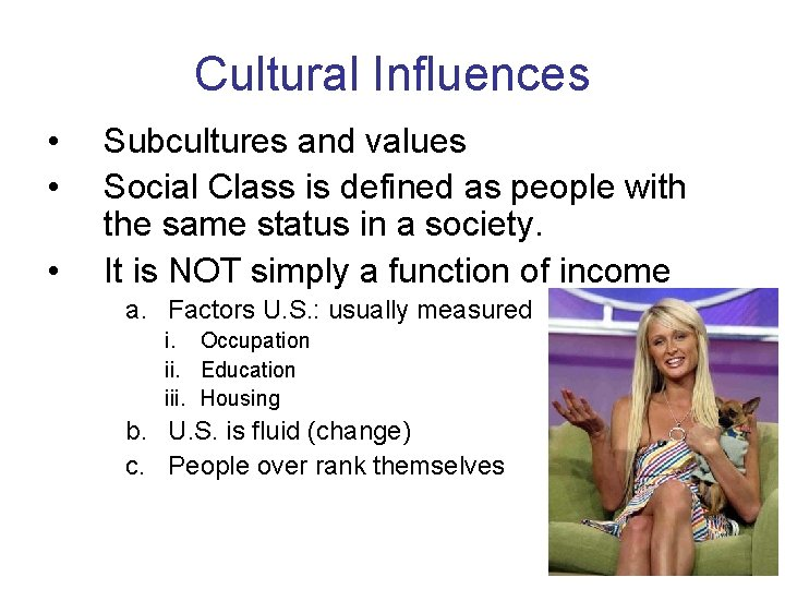 Cultural Influences • • • Subcultures and values Social Class is defined as people