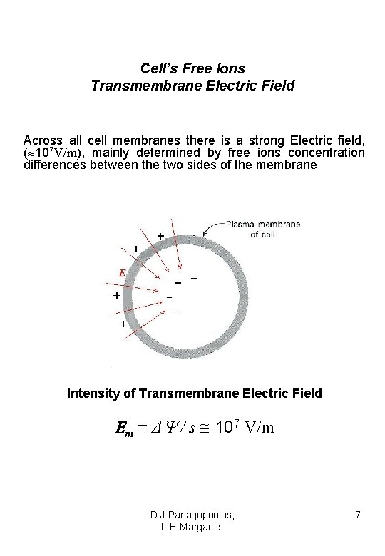 Cell's Free Ions Transmembrane Electric Field Across all cell membranes there is a strong
