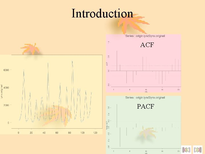 Introduction ACF PACF