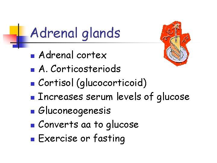 Adrenal glands n n n n Adrenal cortex A. Corticosteriods Cortisol (glucocorticoid) Increases serum