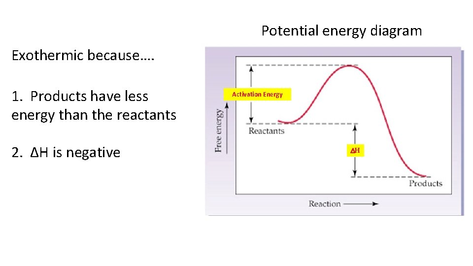Potential energy diagram Exothermic because…. 1. Products have less energy than the reactants 2.