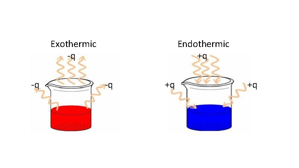 Exothermic -q -q Endothermic +q -q +q +q