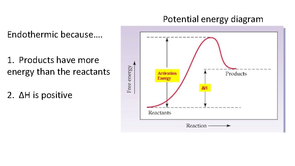 Potential energy diagram Endothermic because…. 1. Products have more energy than the reactants 2.