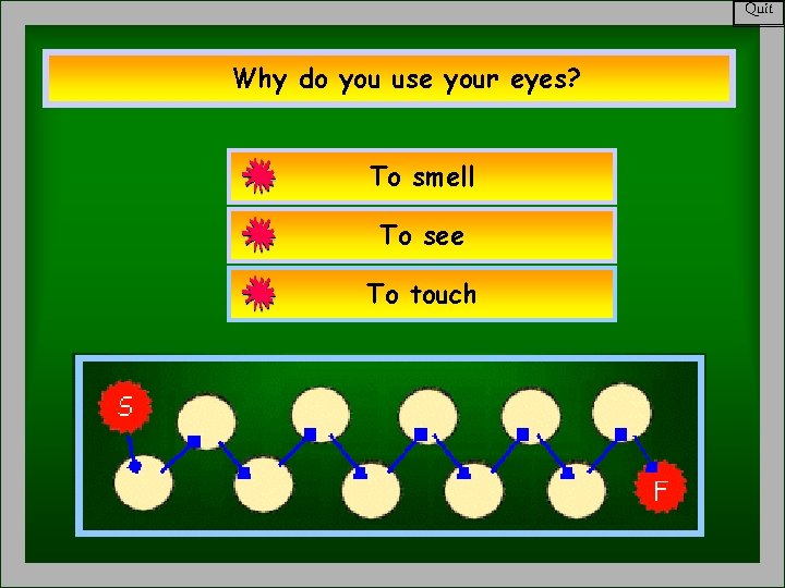 Quit Why do you use your eyes? To smell To see To touch