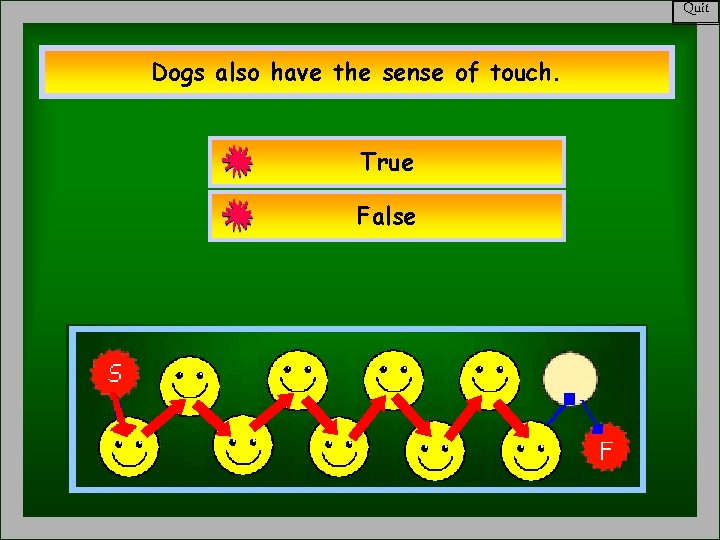 Quit Dogs also have the sense of touch. True False