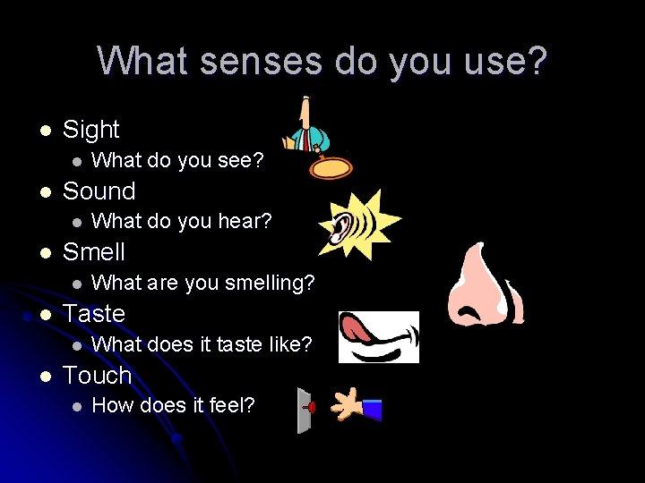 What senses do you use? l Sight l l Sound l l What are