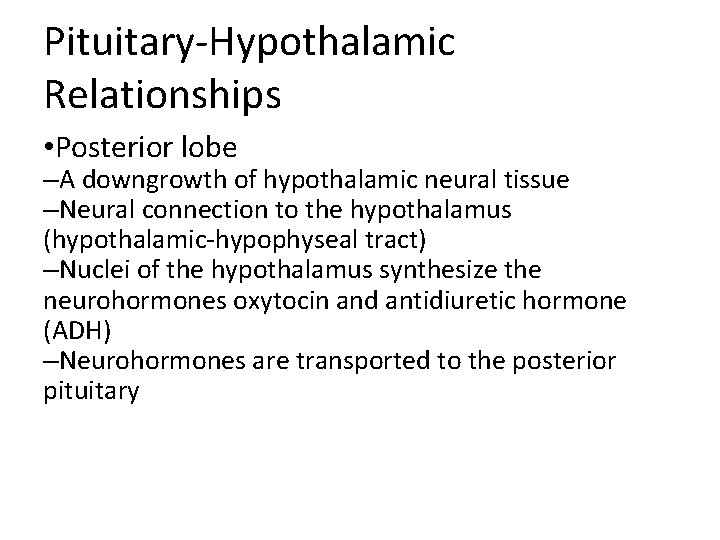 Pituitary-Hypothalamic Relationships • Posterior lobe –A downgrowth of hypothalamic neural tissue –Neural connection to