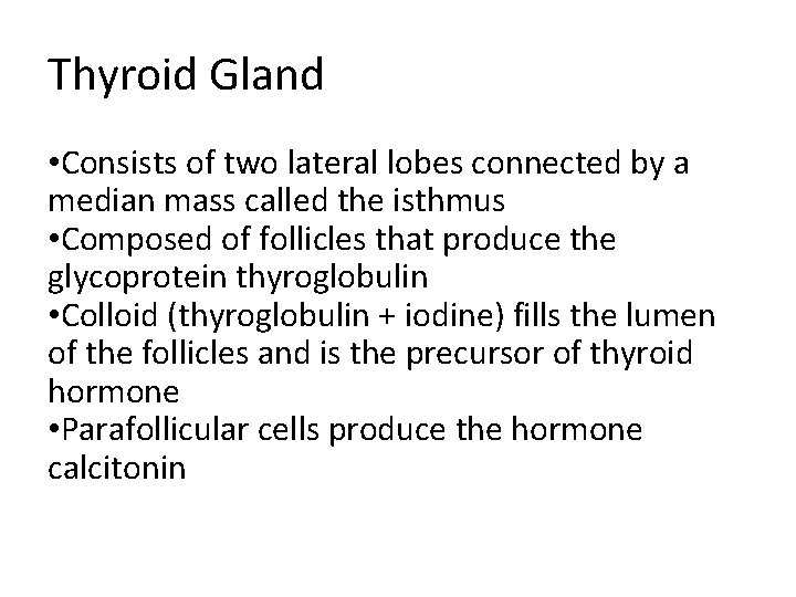 Thyroid Gland • Consists of two lateral lobes connected by a median mass called