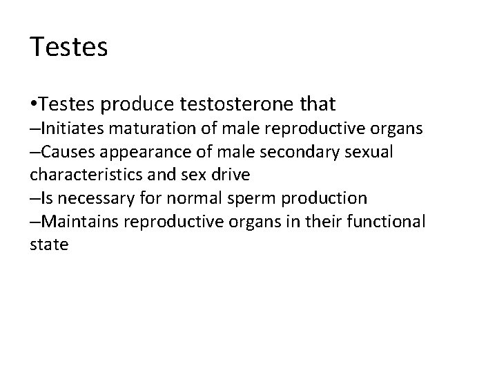 Testes • Testes produce testosterone that –Initiates maturation of male reproductive organs –Causes appearance