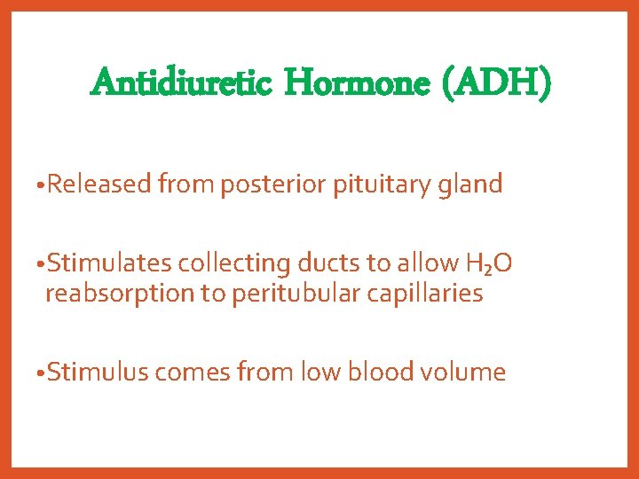 Antidiuretic Hormone (ADH) • Released from posterior pituitary gland • Stimulates collecting ducts to
