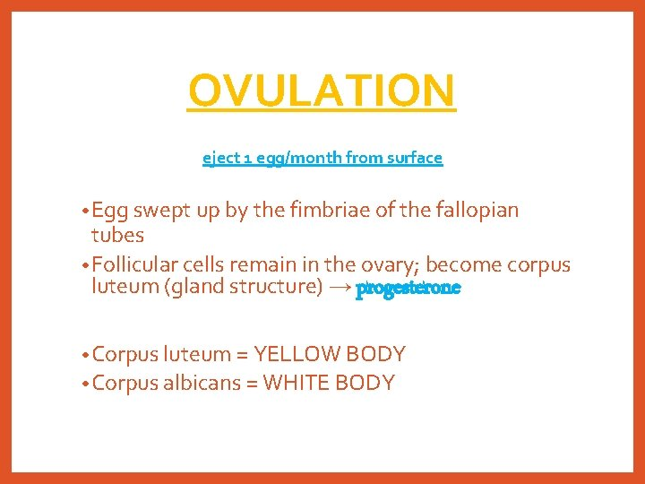 OVULATION eject 1 egg/month from surface • Egg swept up by the fimbriae of