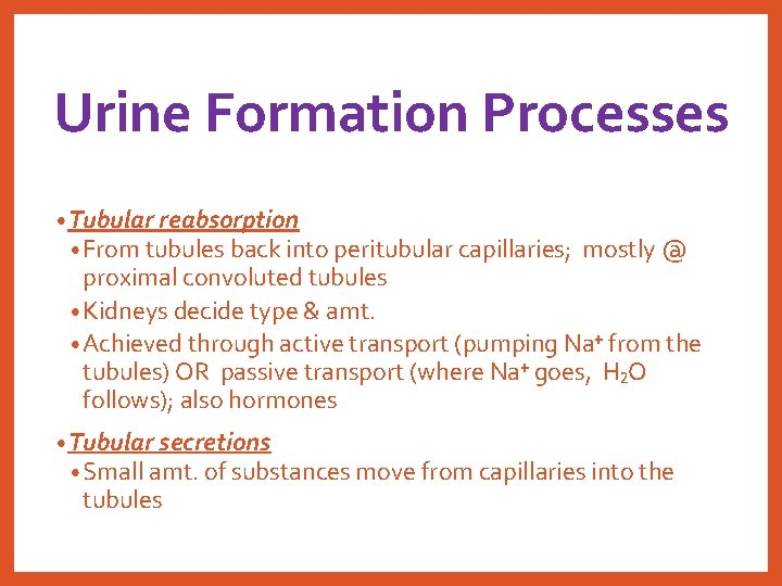 Urine Formation Processes • Tubular reabsorption • From tubules back into peritubular capillaries; mostly
