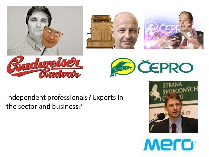 Independent professionals? Experts in the sector and business?