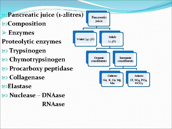 Pancreatic juice (1 -2 litres) Pancreatic juice Composition Ø Enzymes Solids Water (97.