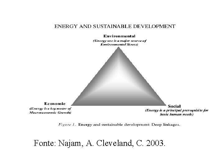 Fonte: Najam, A. Cleveland, C. 2003.