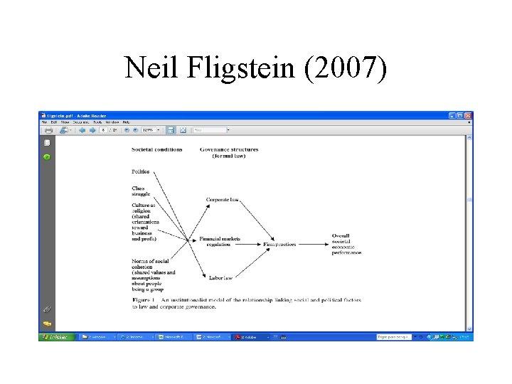 Neil Fligstein (2007)