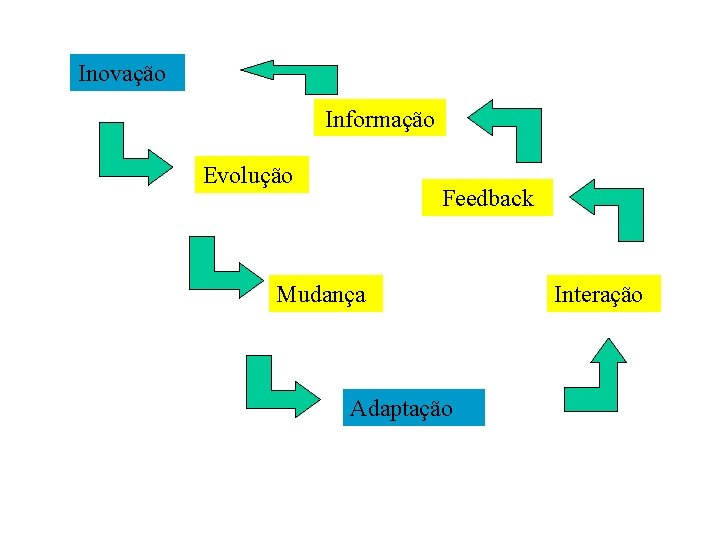Inovação Informação Evolução Feedback Mudança Adaptação Interação
