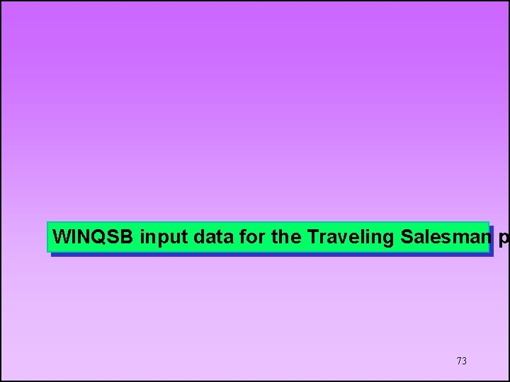 WINQSB input data for the Traveling Salesman p 73