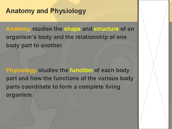 Anatomy and Physiology Anatomy studies the shape and structure of an organism's body and