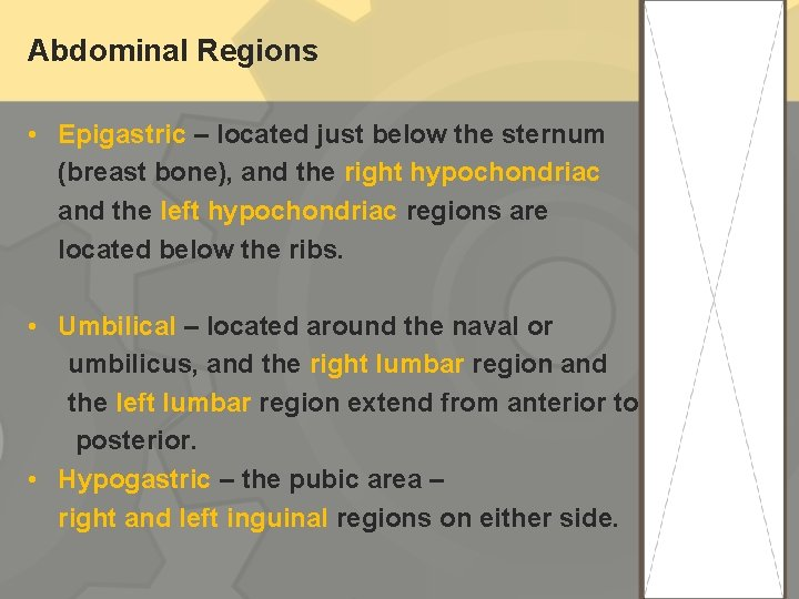 Abdominal Regions • Epigastric – located just below the sternum (breast bone), and the