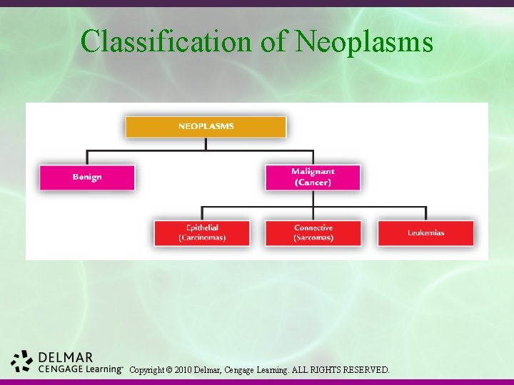 Classification of Neoplasms Copyright © 2010 Delmar, Cengage Learning. ALL RIGHTS RESERVED.