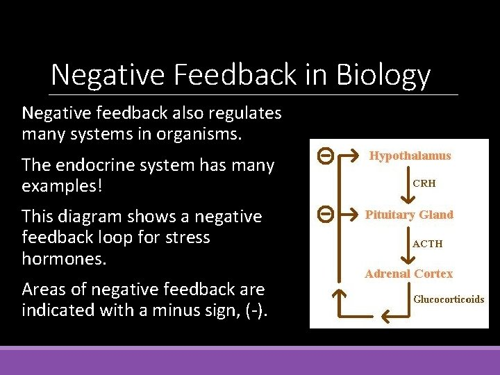 Negative Feedback in Biology Negative feedback also regulates many systems in organisms. The endocrine