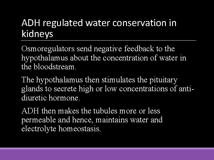 ADH regulated water conservation in kidneys Osmoregulators send negative feedback to the hypothalamus about