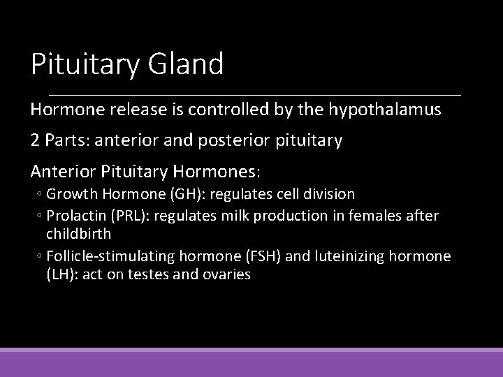Pituitary Gland Hormone release is controlled by the hypothalamus 2 Parts: anterior and posterior