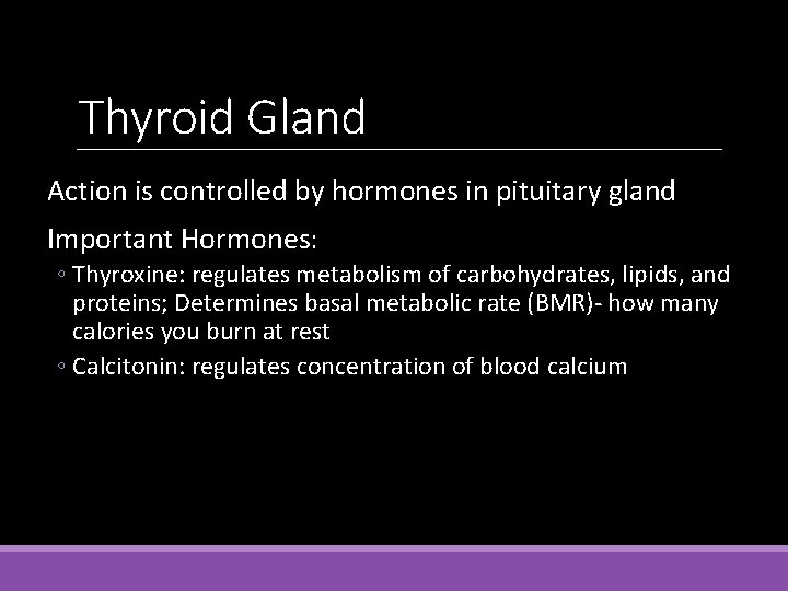 Thyroid Gland Action is controlled by hormones in pituitary gland Important Hormones: ◦ Thyroxine: