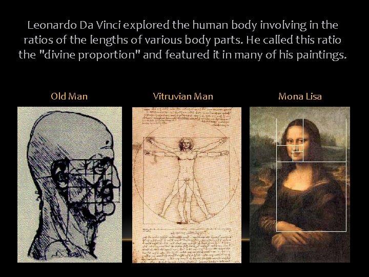 Leonardo Da Vinci explored the human body involving in the ratios of the lengths