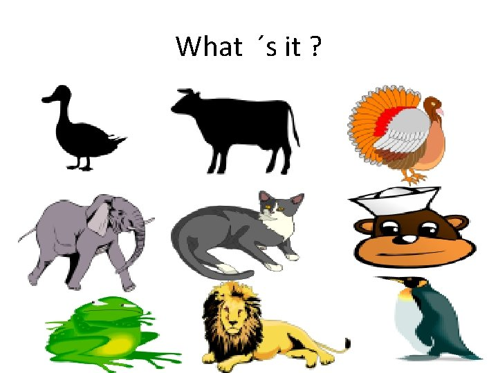 What ´s it ?