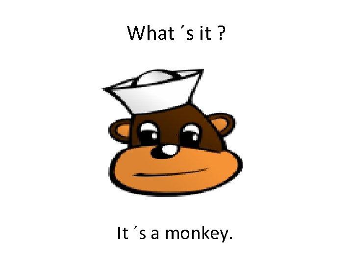 What ´s it ? . It ´s a monkey.