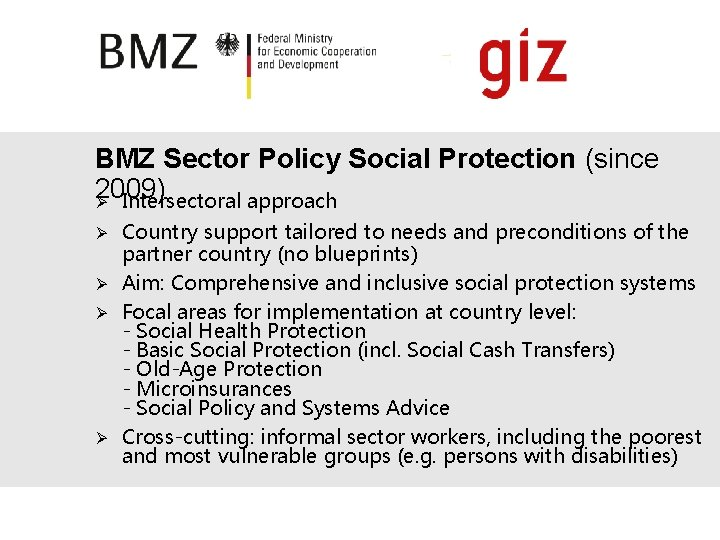 BMZ Sector Policy Social Protection (since 2009) Ø Intersectoral approach Country support tailored to