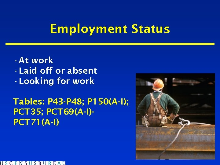 Employment Status • At work • Laid off or absent • Looking for work
