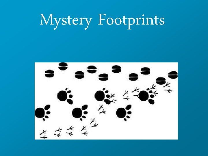 Mystery Footprints
