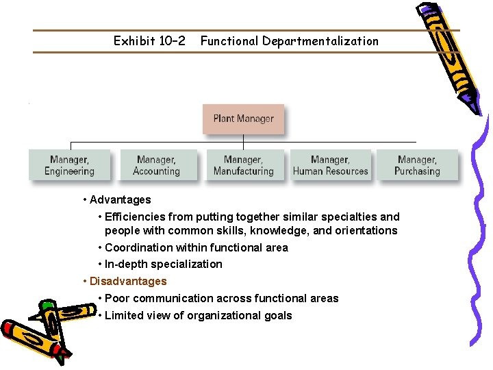 Exhibit 10– 2 Functional Departmentalization • Advantages • Efficiencies from putting together similar specialties