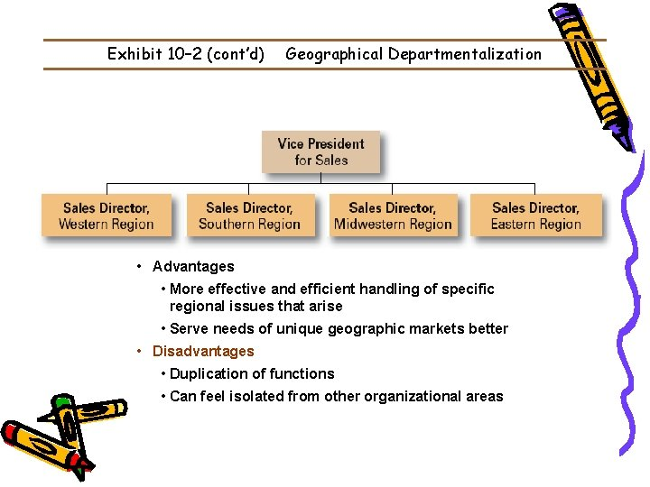 Exhibit 10– 2 (cont'd) Geographical Departmentalization • Advantages • More effective and efficient handling
