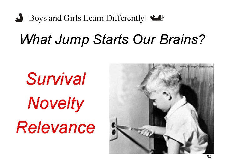 Boys and Girls Learn Differently! What Jump Starts Our Brains? Survival Novelty Relevance 54