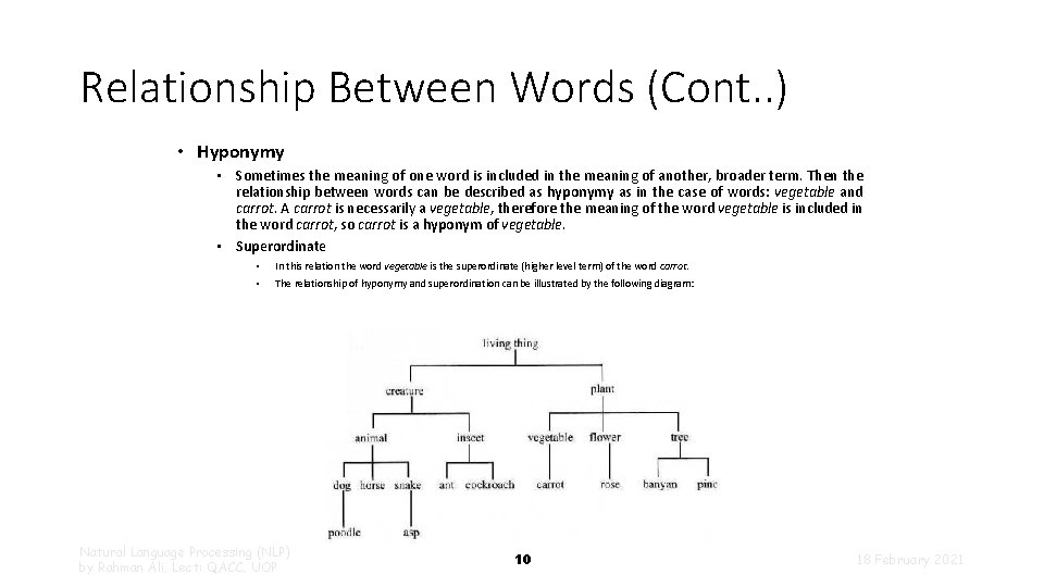 Relationship Between Words (Cont. . ) • Hyponymy • Sometimes the meaning of one