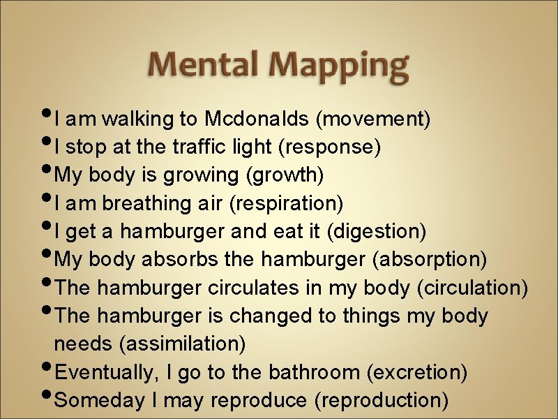 • I am walking to Mcdonalds (movement) • I stop at the traffic