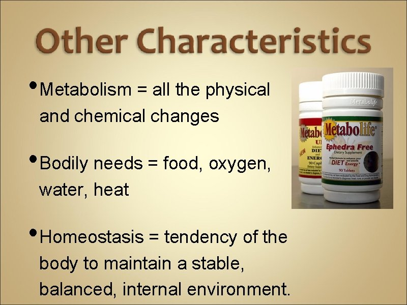 • Metabolism = all the physical and chemical changes • Bodily needs =