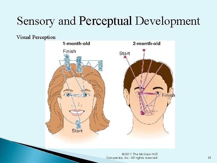Sensory and Perceptual Development Visual Perception © 2011 The Mc. Graw-Hill Companies, Inc. All