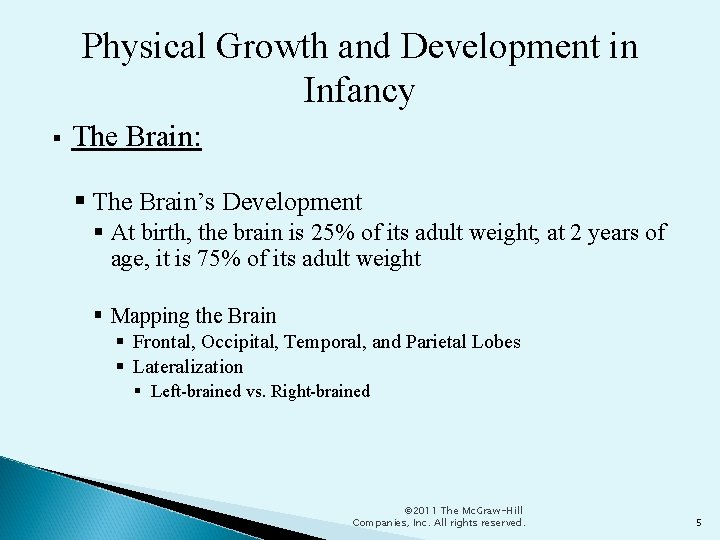 Physical Growth and Development in Infancy The Brain: The Brain's Development At birth, the