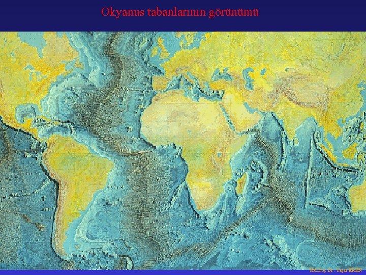 Okyanus tabanlarının görünümü Yrd. Doç. Dr. Yaşar EREN